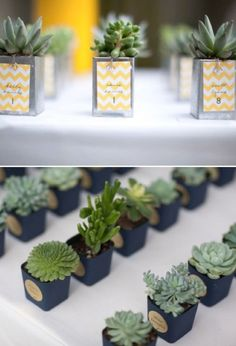 Could commission pots from Cory for favors? (with real or fake succulents) 10 Unique Wedding Favor Ideas — Wedding Ideas, Wedding Trends, and Wedding Galleries Wedding Trends, Diy Wedding, Rustic Wedding, Dream Wedding, Wedding Day, Wedding Shoes, Golf Wedding, Wedding Table, Herb Wedding