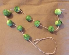 pre vegetariánky Drop Earrings, Fun, Jewelry, Jewlery, Jewerly, Schmuck, Drop Earring, Jewels, Jewelery