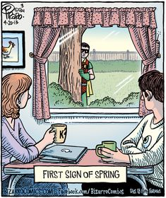A little Bird Nerd humour, courtesy of Bizarro Comics! Robins are a sign of spring - usually slightly smaller than this one. Robin Comics, Dc Comics, Funny Comics, Funny Cartoons, Bizarro Comic, Funny Shit, The Funny, Funny Stuff, Funny Things