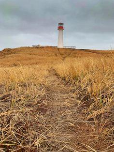 Randonnée aux Îles de la Madeleine : idées de sentiers Le Havre, Wind Turbine, Canada, Adventure, Summer, Travel, Illustration, Landscapes, Pathways