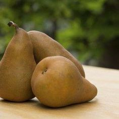 This baked bosc pear recipe is a luscious dessert that& GERD-friendly and especially good in autumn when delectable Bosc pears are in season. Acid Reflux Diet Plan, Acid Reflux Recipes, Stop Acid Reflux, Pear Dessert, Gerd Diet, Baked Pears, Home Remedies For Heartburn, Pear Recipes