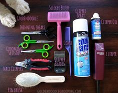 Goldendoodle Grooming Tools