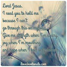 Lord Jesus, I need you to hold me because I can't go through this on my own. Give me strength when I'm weary, joy when I'm mourning and hope when I feel only despair. Amen.