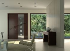 Contemporary door with stainless steel