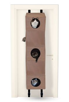 Could Make This Out Of Hanging Shelves...Hanginu0027 Cat Condo | DIY |  Pinterest | Cat Condo, Cat And Cat Furniture