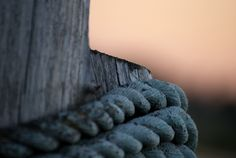 Holding Together by Angela Goguen Wooden Posts, Macro Photography, Crates, Hold On, Sun, Gallery, Roof Rack, Naruto Sad, Drawers