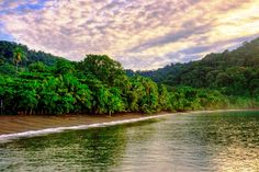 Costa Rica rainforest scientific program at Nicuesa Lodge.