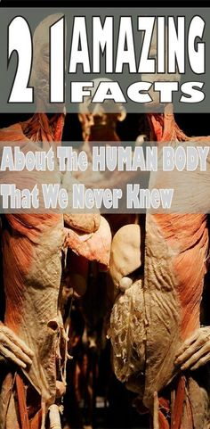 21 Amazing Facts about the Human Body That We Never Knew Health Tips For Women, Health And Fitness Tips, Health And Beauty Tips, Health Advice, Health And Wellness, Health Care, Health Diet, Healthy Drinks, Healthy Tips