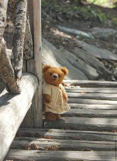 Teddy bear / Мишки Тедди ручной работы. Авторская мишка Тина. Оксана Ляшенко (sanateddy). Ярмарка Мастеров. Мишка ручной работы, мохер