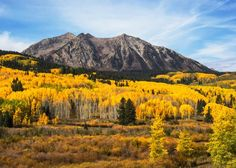 Fall colors in Crested Butte - Barclaycard Travel Community