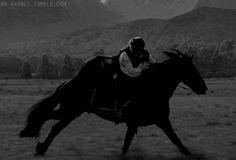 horse gif   Tumblr