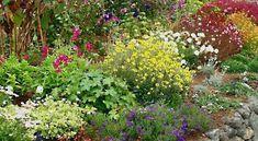 Garden Painting - English Garden by Ellen Henneke Garden Of Earthly Delights, Garden Painting, Garden Inspiration, Garden Ideas, Garden Landscaping, Landscaping Ideas, Botanical Gardens, Beautiful Gardens, Gardening Tips