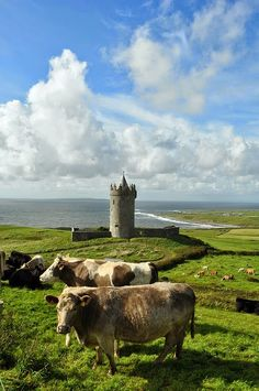 Doolin Bay, County Clare, Ireland Celebrate the Irish history, culture and charm… Oh The Places You'll Go, Places To Visit, County Clare, Bay County, England And Scotland, Emerald Isle, Ireland Travel, Ireland Vacation, British Isles