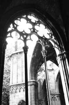 Gothic cathedral - Barcelona | by Lowry Lou