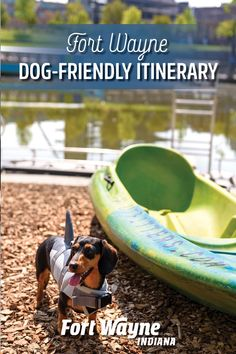 Party with your pup and celebrate a fetch-ing Fort Wayne, Indiana adventure! There are plenty of fur-friendly activities that you can enjoy together. Fort Wayne Indiana, Dog Friends, Pup, Outdoor Adventures, Activities, Dogs, Party, Dog Baby, Pet Dogs