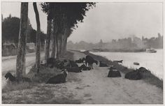 Alfred Stieglitz  American (Hoboken, N.J., USA 1864 - 1946 New York, N.Y., USA)  On the Seine - Near Paris, 1897