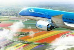 https://i.pinimg.com/236x/ae/14/a1/ae14a1ec516d9210c1154bc09b08b5cd--royal-dutch-civil-aviation.jpg
