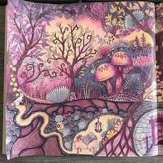 #johannabasford #enchantedforestcoloringbook #enchantedforest #meinzauberwald #adultcoloring #adultcolouring #coloring #colouring #coloringbook #colouringbook #coloredpencils #colouredpencils #prismacolor #prismacolorpremier #prismacolorpencils #buntstifte #ausmalenfürerwachsene #ausmalen Secret Garden Coloring Book, Coloring Book Art, Colouring Pages, Adult Coloring Pages, Enchanted Forest Book, Enchanted Forest Coloring Book, Colorful Drawings, Cute Drawings, Johanna Basford Coloring Book