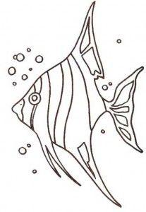desenhos-animais-marinhos-colorir-atividades-ciencias--(3) Stained Glass Patterns, Mosaic Patterns, Embroidery Patterns, Paper Embroidery, Doily Patterns, Embroidery Dress, Dress Patterns, Fish Drawings, Animal Drawings