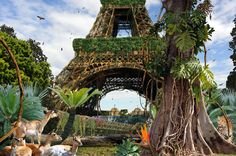 15. Chris Morin Eitner - Paris Jungle Tour Eiffel