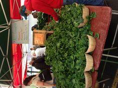 Spinach for sale DuPont circle farmers market Washington, D.C.