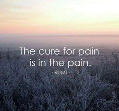 The Cure For Pain * Your Daily Brain Vitamin v8.11.15 * Pain, while difficult, teaches us things. Don't fight it. Roll with it and you'll be amazed at what you learn and how quickly it moves on. #DontFightIt #motivationalquotes #inspirationalquotes #lifequotes #lovequotes #quoteoftheday #wordsofwisdom #quotes #DBV #DailyBrainVitamin