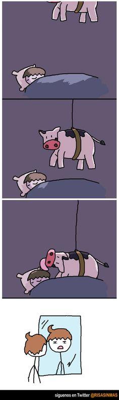 Duerme, la vaca, baja por un cable, le lame el cabello, tiene un gallo