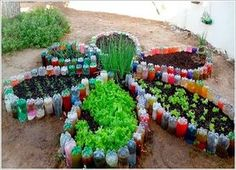 Make a Flower Shaped Garden Bed for Your Vegetable Garden with Recycled Plastic Bottles
