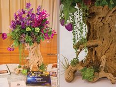 Sweet pea grape wood tree!
