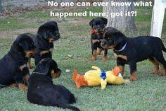 No one!
