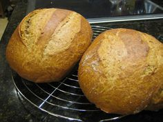 Picture of 100% Whole Wheat Crusty No Knead Artisan Bread