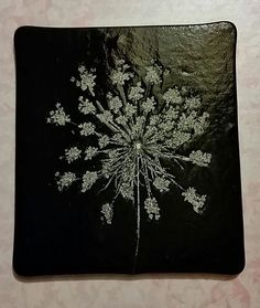 Queen Anne's lace fossil vitra on black
