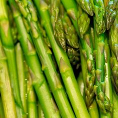 Asparagus grown in a sunny, raised bed usually begins to produce by April 15. Enjoy!