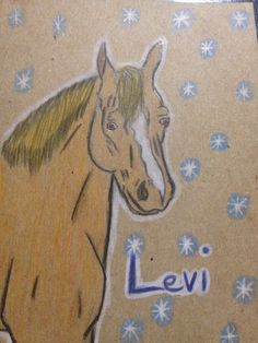 A really crappy and fast drawing of Levi :P