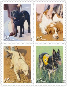 In today's world, dogs are more than just best friends — frequently, they're also superb coworkers. This set of four stamps depicts four hard-working canines: a guide dog assisting a woman who is blind, a tracking dog on the trail of a scent, a therapy dog visiting an elderly woman in her home, and a search and rescue dog standing in a field, ready to tackle the next assignment.