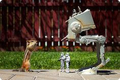 Chipmunks with Star Wars and Lego figures, pictures by Chris McVeigh Star Wars Fan Art, Star Trek, Lego Do Star Wars, Star Wars Toys, Lego Star, Designer Couch, Star Wars Figurines, Lego Figures, Action Figures