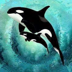 Ballena Orca🐋 y su bebe orca🐋💦💙 . Arte Orca, Orca Art, Dolphin Art, Whale Art, Orca Tattoo, Whale Tattoos, Animals And Pets, Baby Animals, Cute Animals