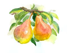 Pears on the tree original watercolor painting 10 от ORIGINALONLY