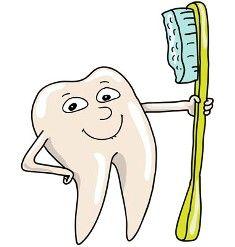 Dental Health with Dr. Bienstock New York, NY Dental Services, Kids Events, Dental Health, Martie, York, Oral Health