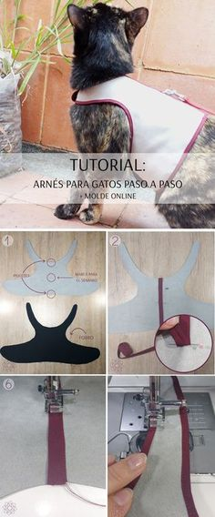 Easy sewing: Cat harness + free mold - cómo perros y gatos - Perros Diy Clothes For Cats, Puppy Clothes, Kitten Harness, Cat Vet, Cat Towers, Cat Carrier, Cat Accessories, Cat Pattern, Dog Id