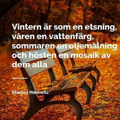 Hösten är här och kan vara så vacker på fina dagar. Vilket är ditt bästa höstminne? #hösten #höst #citat #vacker #löv #bänk #foto #bild #favorit #minne