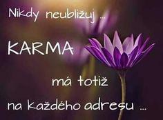 Karma, True Stories, Wellness
