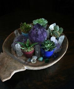 little garden - apartmentf15