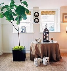 I love everything about this—including the Westies. Grant K. Gibson Interior Design