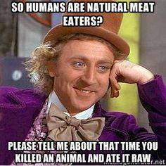 so humans are natural meat eaters willy wonka meme - Google Search