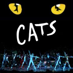 Cats.   *I don't care what anyone says, I will love this musical/movie til the day I die, I will defend it as an amazing piece of art and music against anyone who dares say anything derogatory about it.*