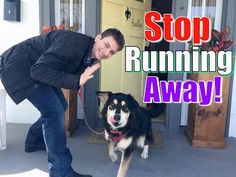 Please Share This Page: Photo © shoshina – fotolia.com This video by Zak George's Dog Training rEvolution presents an incredible and effective method of training your dog not to run out of the front door. There are a lot of great tips along the way as well. In the video, Zak (the trainer) checks out …