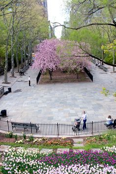 Carl Schurz Park, Upper East Side. NYC Spring