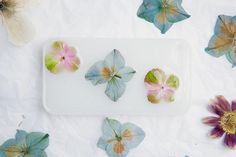 Pressed Flower Phone Case - We compiled a list of 39 other DIY pressed flower ideas for you to make | Coolcrafts.com