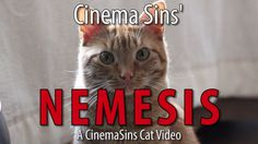 The Nemesis Of Cinema Sins: A Cinema Sins #Cat Video (+playlist)